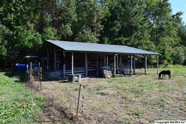 County Road 387, Dutton, AL 35744 (MLS #1091935) :: The Pugh Group RE/MAX Alliance