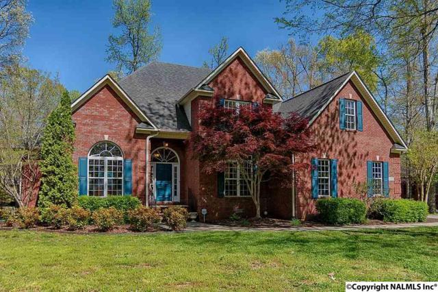 135 Honey Brook Drive, Toney, AL 35773 (MLS #1091971) :: Amanda Howard Real Estate™