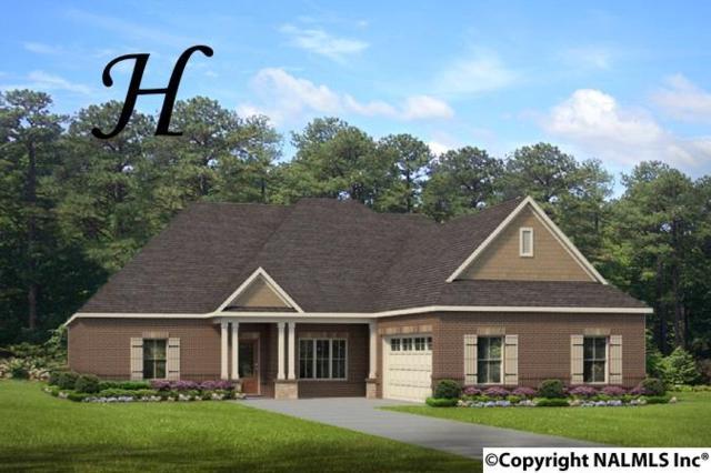 135 Hilltop Ridge Drive, Madison, AL 35756 (MLS #1092025) :: Intero Real Estate Services Huntsville