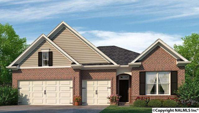 115 Balboa Road, Meridianville, AL 35759 (MLS #1092139) :: Capstone Realty