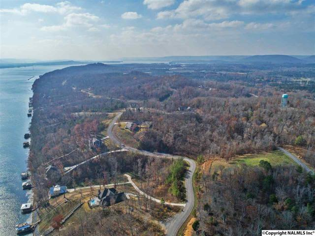 223 Lookout Mountain Drive, Scottsboro, AL 35769 (MLS #1092140) :: Amanda Howard Sotheby's International Realty