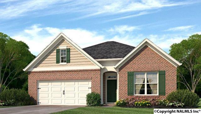 109 Balboa Road, Meridianville, AL 35759 (MLS #1092150) :: Capstone Realty