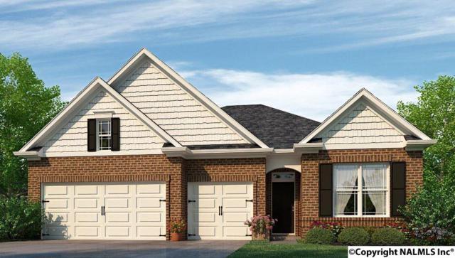121 Balboa Road, Meridianville, AL 35759 (MLS #1092157) :: Capstone Realty