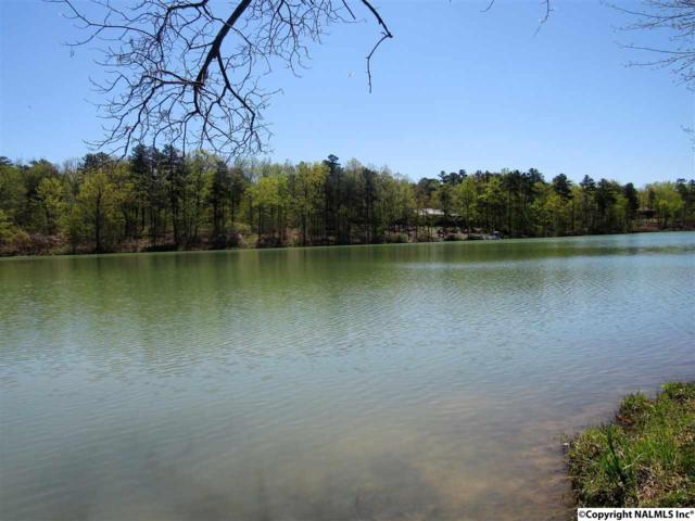 000 County Road 103, Mentone, AL 35984 (MLS #1092172) :: RE/MAX Alliance