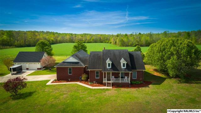 1061 Mulberry Road, Hazel Green, AL 35750 (MLS #1092199) :: Capstone Realty