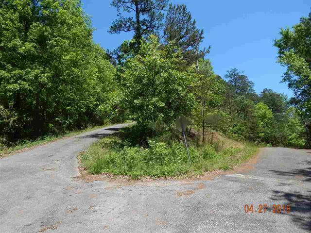 Lot D Nola Trail, Gadsden, AL 35901 (MLS #1092538) :: Amanda Howard Sotheby's International Realty