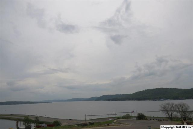 241 Hill Avenue, Guntersville, AL 35976 (MLS #1093529) :: Amanda Howard Sotheby's International Realty
