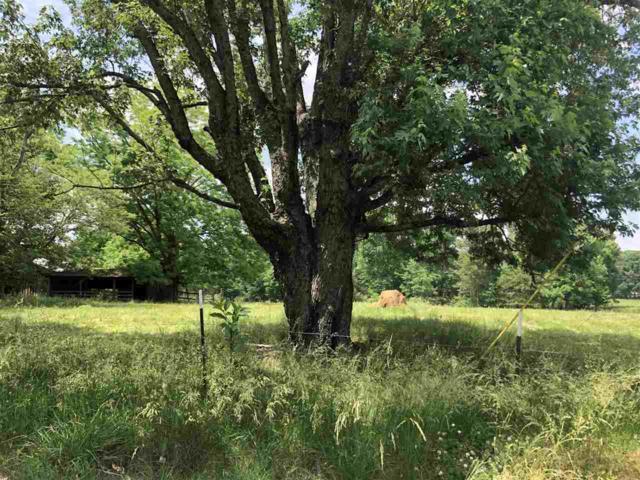 370 County Road 1770, Joppa, AL 35087 (MLS #1094085) :: Capstone Realty