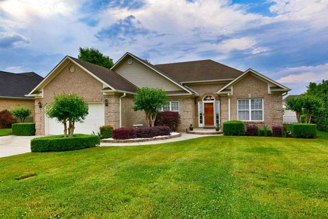 519 Wilson Mann Road, Owens Cross Roads, AL 35763 (MLS #1094137) :: Intero Real Estate Services Huntsville