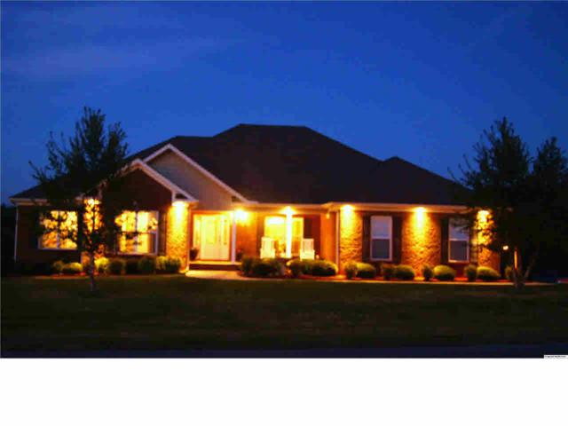 101 Hill Grass Circle, Huntsville, AL 35811 (MLS #1094256) :: RE/MAX Alliance
