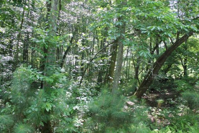 LOT 27 HL County Road 103, Mentone, AL 35984 (MLS #1094616) :: Amanda Howard Sotheby's International Realty