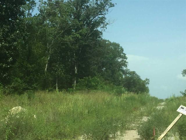 0 Bluff City Road, Somerville, AL 35670 (MLS #1094853) :: RE/MAX Distinctive | Lowrey Team