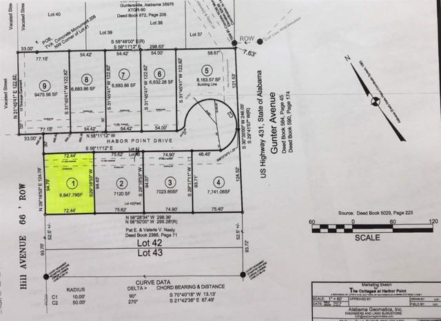 Harbor Pointe, Guntersville, AL 35976 (MLS #1094986) :: RE/MAX Alliance