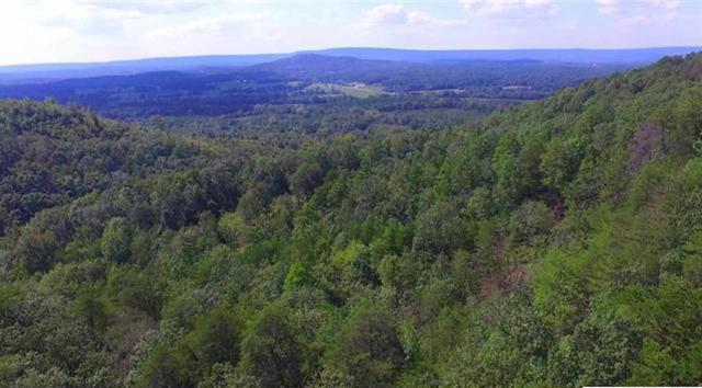 0 County Road 91, Gaylesville, AL 35973 (MLS #1095114) :: Weiss Lake Realty & Appraisals
