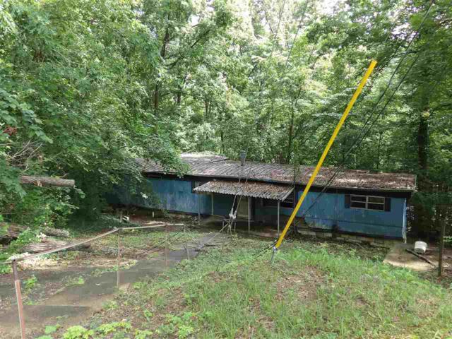 1608 Jordan Street, Guntersville, AL 35976 (MLS #1095187) :: Intero Real Estate Services Huntsville