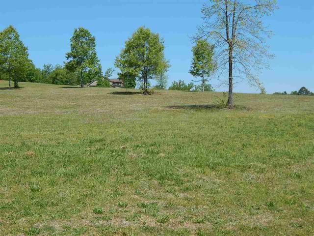 166 Legendary Drive, Guntersville, AL 35976 (MLS #1095437) :: Amanda Howard Sotheby's International Realty