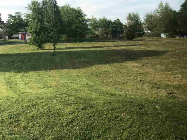 294 Brown Acres Road, Guntersville, AL 35976 (MLS #1095716) :: Capstone Realty