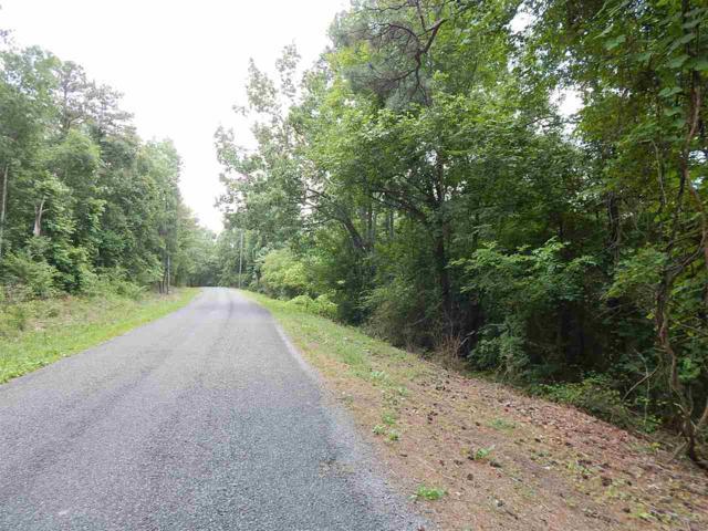 Thompson Falls Drive, Guntersville, AL 35976 (MLS #1095892) :: Amanda Howard Real Estate™