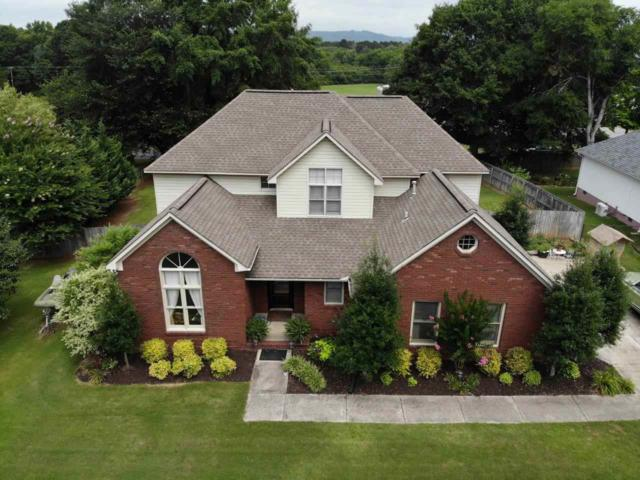 3529 Hualapai Circle, Guntersville, AL 35976 (MLS #1096100) :: Amanda Howard Real Estate™