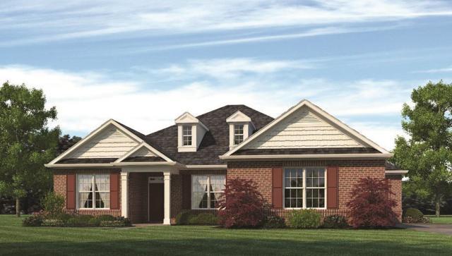 9 Youpon Drive, Huntsville, AL 35824 (MLS #1096109) :: Capstone Realty