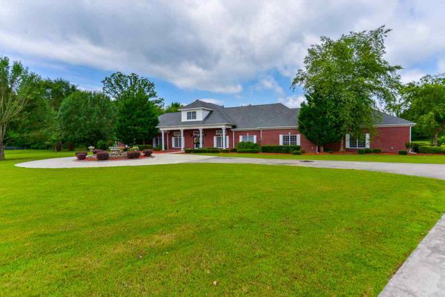 194 County Road 380, Decatur, AL 35603 (MLS #1096252) :: Amanda Howard Real Estate™