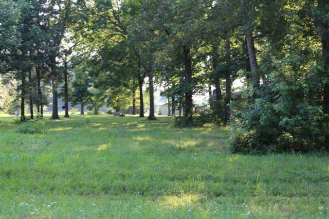 01 Mckee Road, Toney, AL 35773 (MLS #1096400) :: Legend Realty