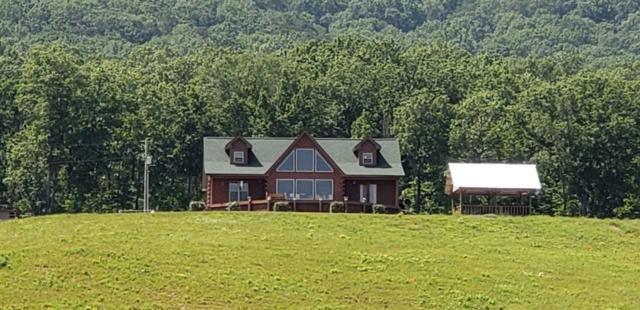 1556 County Road 14, Piedmont, AL 36272 (MLS #1096423) :: Amanda Howard Real Estate™