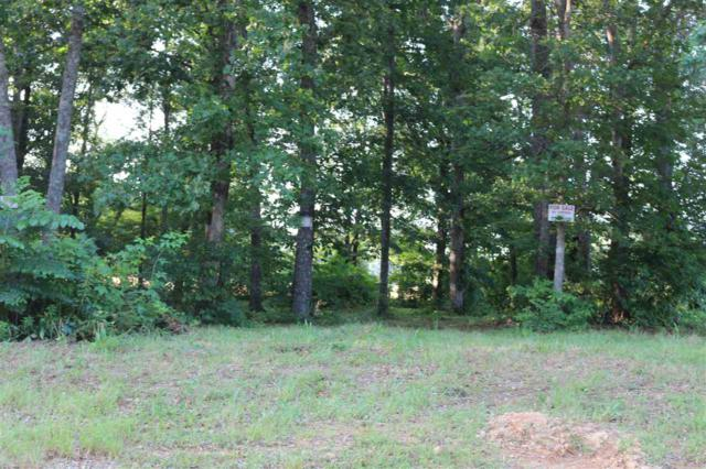 03 Christie Drive, Toney, AL 35773 (MLS #1096425) :: Legend Realty