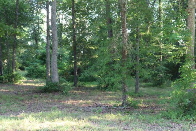 15 Jessica Drive, Toney, AL 35773 (MLS #1096473) :: Legend Realty