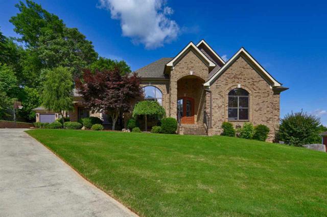 203 Steel Horse Drive, Madison, AL 35757 (MLS #1096486) :: Amanda Howard Real Estate™