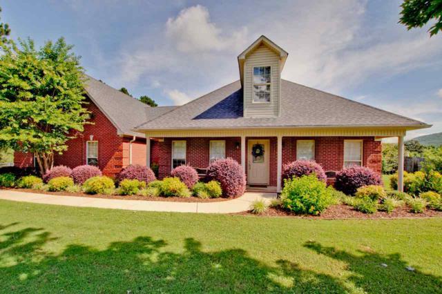 125 Hickory Hill Road, Gurley, AL 35748 (MLS #1096490) :: Intero Real Estate Services Huntsville