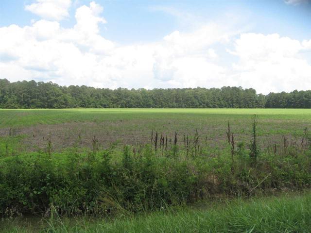30 ACRES Piney Woods Road, Owens Cross Roads, AL 35763 (MLS #1096495) :: Intero Real Estate Services Huntsville