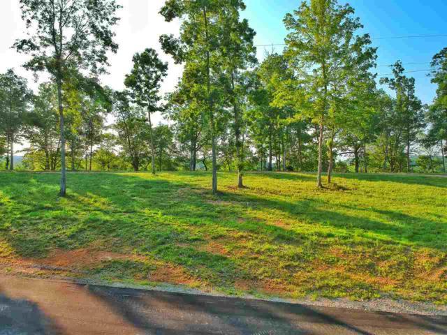515 County Road 578, Rogersville, AL 35652 (MLS #1096503) :: Amanda Howard Sotheby's International Realty