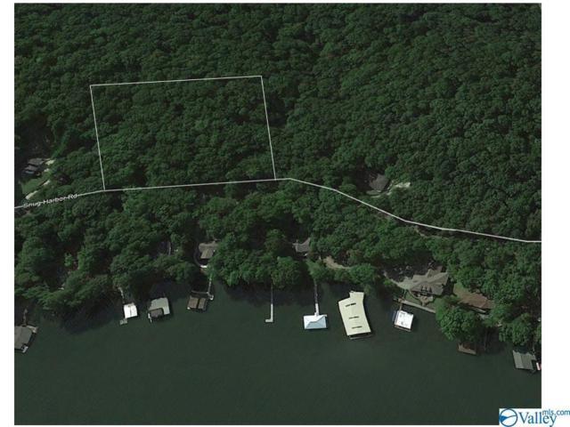 0 Snug Harbor Road, Grant, AL 35747 (MLS #1096639) :: Intero Real Estate Services Huntsville