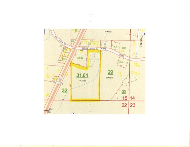 0 Blake Road, Blountsville, AL 35031 (MLS #1096653) :: RE/MAX Alliance