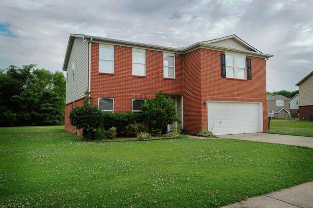 131 Ranier Street, Meridianville, AL 35759 (MLS #1096946) :: Capstone Realty