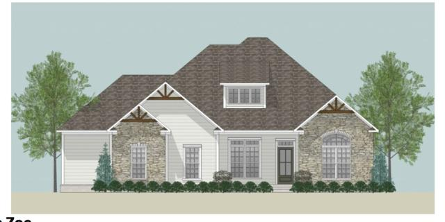 113 Shields Lake Drive, Huntsville, AL 35811 (MLS #1097018) :: Legend Realty
