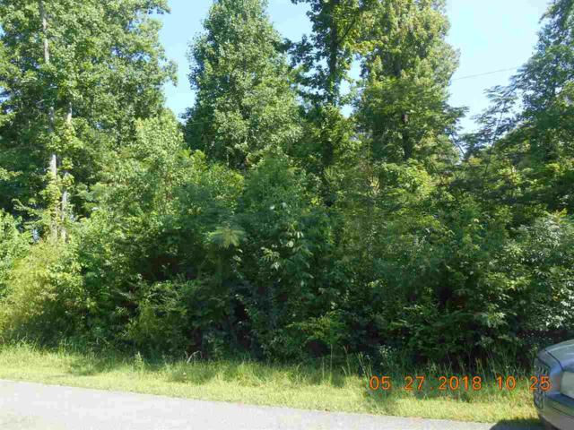 0 Broughton Springs Road, Southside, AL 35907 (MLS #1097195) :: Revolved Realty Madison