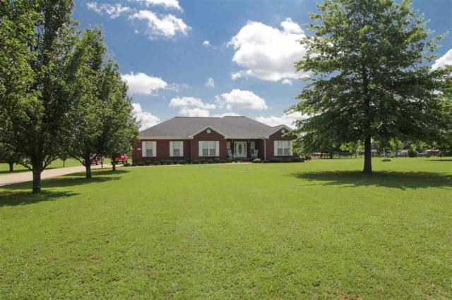 167 Brier Fork Road, Hazel Green, AL 35750 (MLS #1097347) :: RE/MAX Distinctive | Lowrey Team