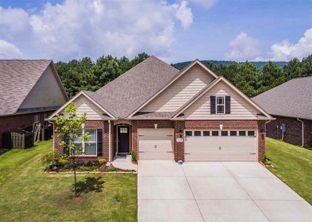 7312 Vidette Lane, Owens Cross Roads, AL 35763 (MLS #1097356) :: Intero Real Estate Services Huntsville