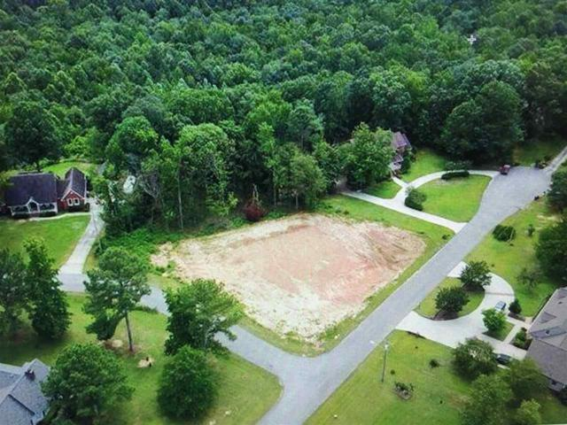 300 Bluff Drive, Hartselle, AL 35640 (MLS #1098130) :: RE/MAX Alliance