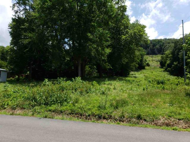 225 SE Lincoln Avenue, Fort Payne, AL 35967 (MLS #1098234) :: Capstone Realty
