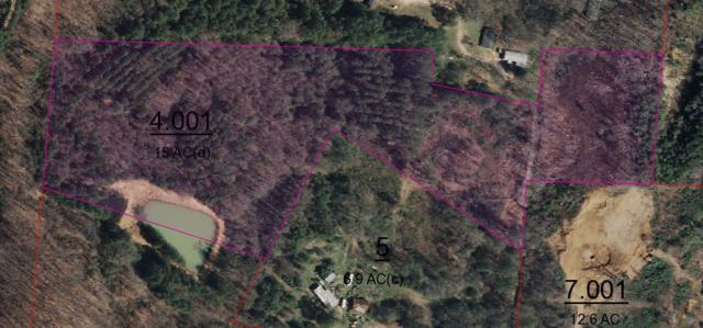 255 Mercer Lane, Guntersville, AL 35976 (MLS #1098274) :: RE/MAX Distinctive | Lowrey Team