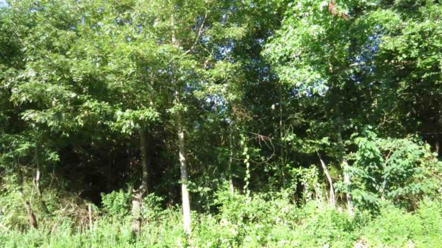0 Spring Creek Road, Guntersville, AL 35976 (MLS #1098374) :: RE/MAX Distinctive | Lowrey Team