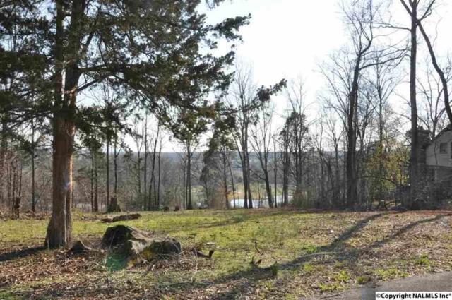 110 Deer Run Lane, Harvest, AL 35749 (MLS #1098425) :: RE/MAX Alliance