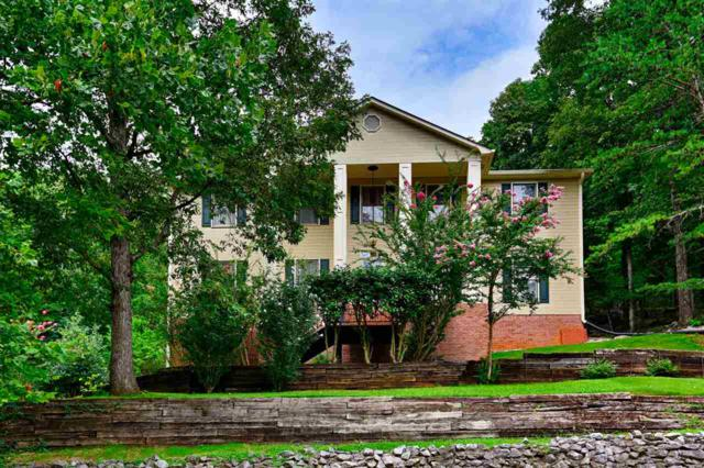 1801 Blevins Ridge Drive, Huntsville, AL 35802 (MLS #1098862) :: Amanda Howard Sotheby's International Realty
