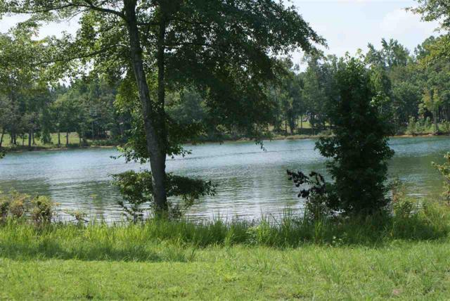 Lot 146 & 146A County Road 177, Crane Hill, AL 35053 (MLS #1099224) :: RE/MAX Alliance