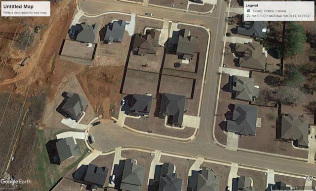 0 Crystalspring Drive, Madison, AL 35757 (MLS #1099695) :: RE/MAX Alliance