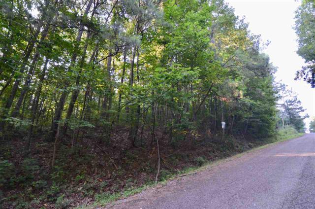 40 Becky Drive, Gadsden, AL 35901 (MLS #1099730) :: MarMac Real Estate