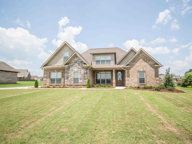 29149 Liverpoole Drive, Toney, AL 35773 (MLS #1099801) :: Amanda Howard Sotheby's International Realty